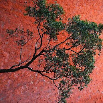 Nice spot at Uluru by jagphoto