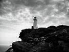 Cape Spear by Daphne Johnson