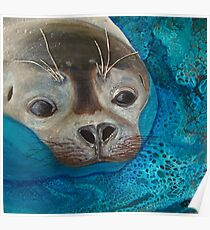 Seal Just a Peek Poster