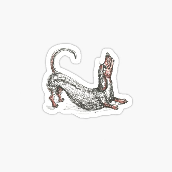 Dachshund stretching. Long sausage dog, doxie, weiner, pen and ink illustration Sticker