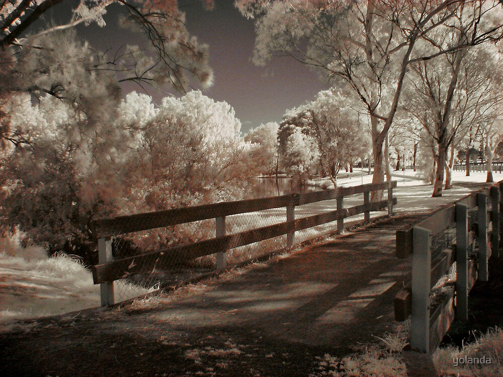 Wooden Bridge by yolanda