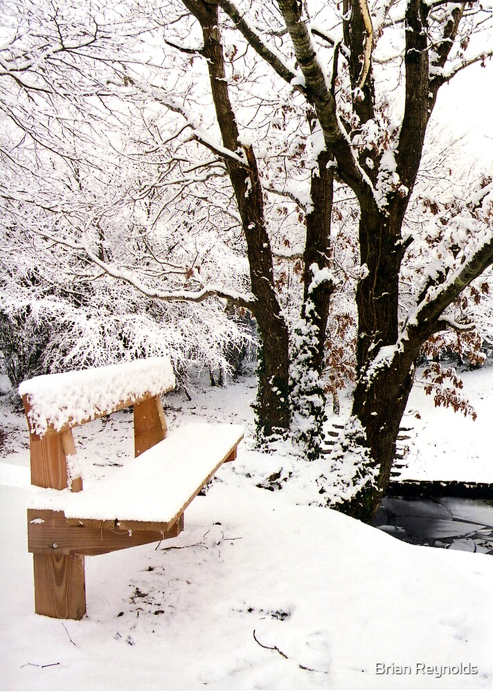 Seat in Snow by Brian Reynolds