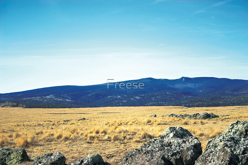 """""""Arizona High Country"""" by Freese   Redbubble"""