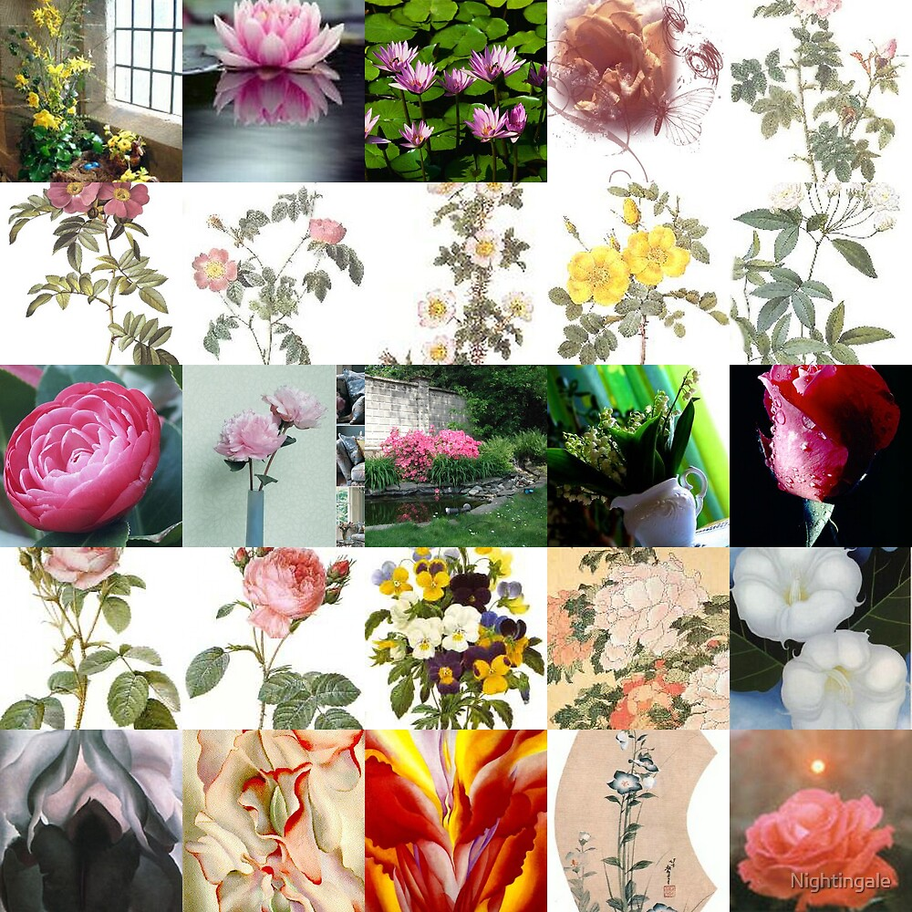 Flowers Collage by Nightingale