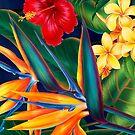 Tropical Paradise Hawaiian Birds of Paradise Illustration by DriveIndustries