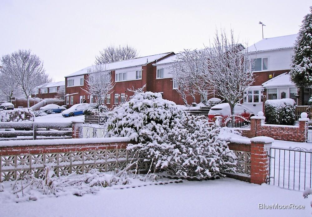 Virgin Snow by BlueMoonRose