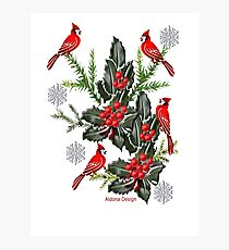Holly,Cardinals & Snowflakes Photographic Print