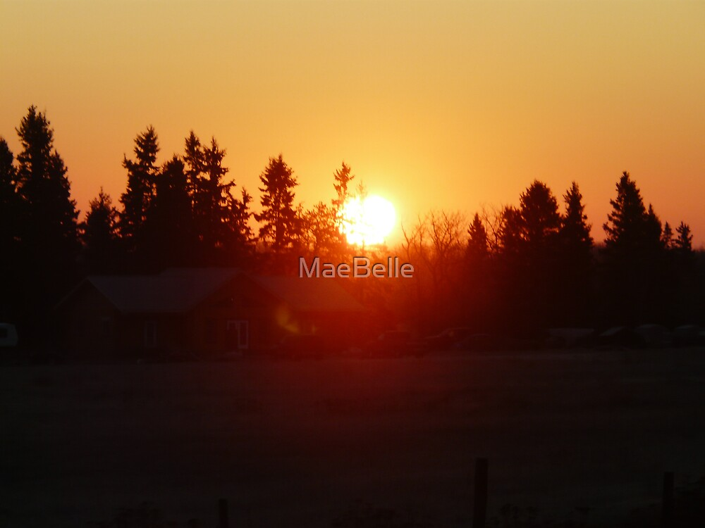 Golden Sunrise Oct 20,/08 by MaeBelle