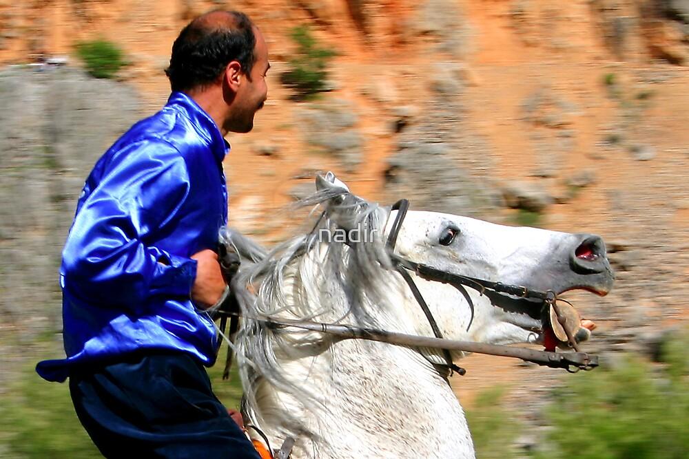 ridig a horse by nadir