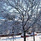 Eine Winterstraßenszene von BlueMoonRose