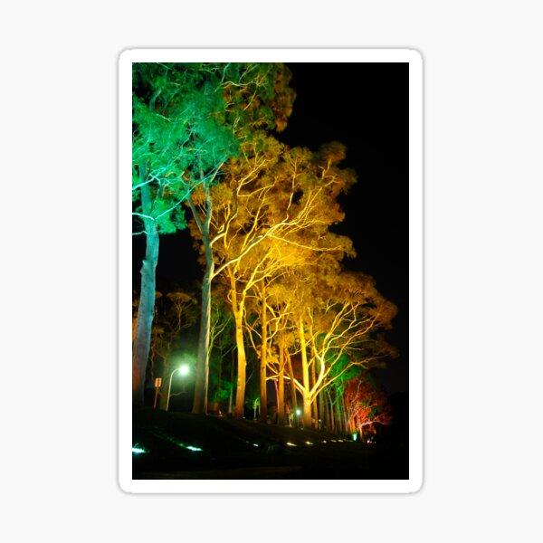 Tree Lights Sticker