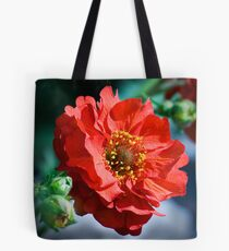Geum Mrs Bradshaw Tote Bag