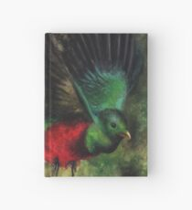 Animal Abstractions: Quetzal Hardcover Journal