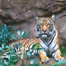 Stylized photo of a Malayan female tiger lying on rocky ledge.   by NaturaLight