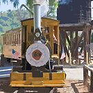 Stylized photo of a train locomotive and passenger car and water tower at railroad crossing. by NaturaLight