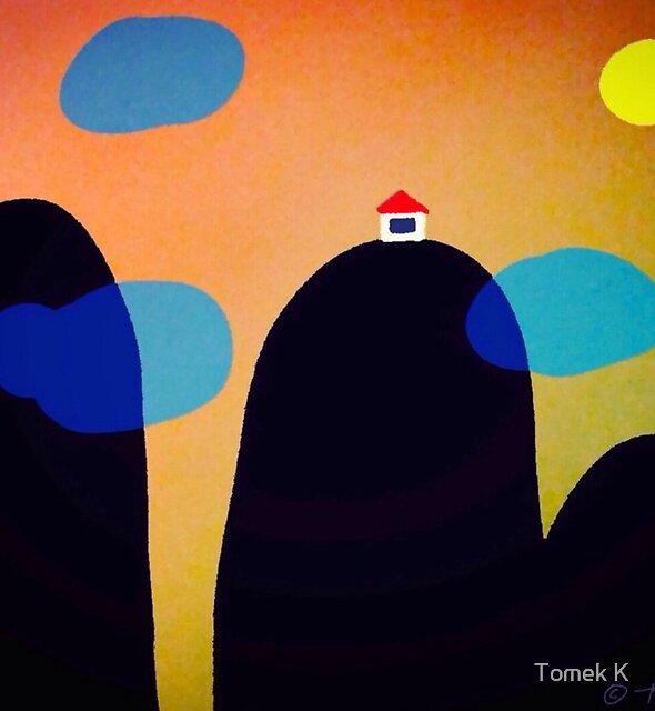 Dream House by Tomek Kozyra