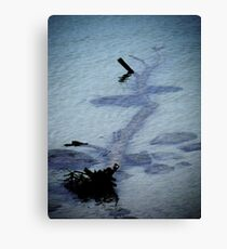 Murder by Drowning. Canvas Print