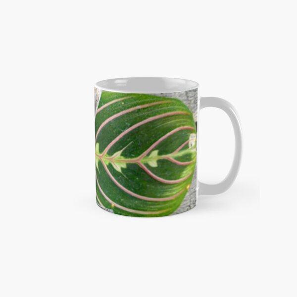 Predator of the Garden. Classic Mug