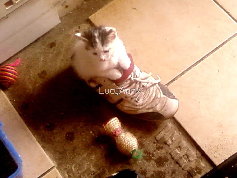 Kitty In A shoe by LucyAnnx