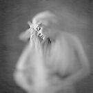 In the bathroom mirror by Mel Brackstone