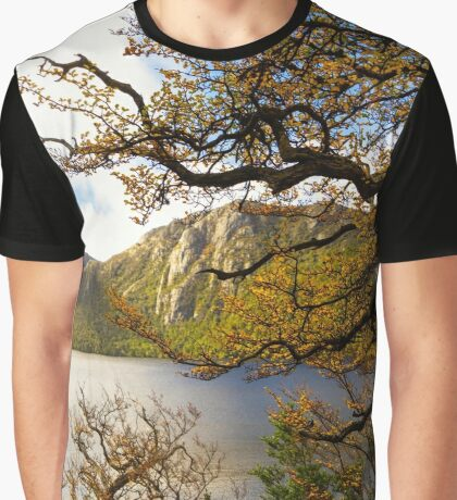 The beautiful Fagus Graphic T-Shirt