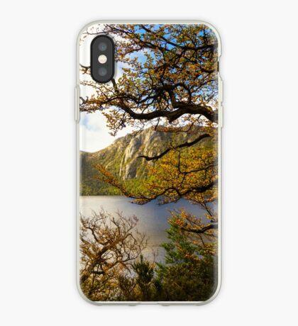 The beautiful Fagus iPhone Case