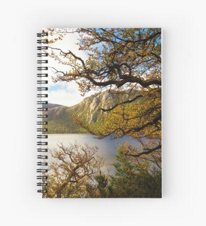 The beautiful Fagus Spiral Notebook