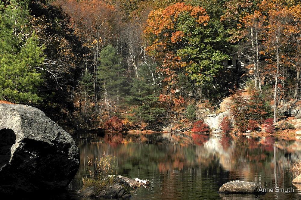 The Pond by Anne Smyth