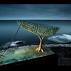 Sculpture By the Sea... By Night... and By Light by Brent Pearson