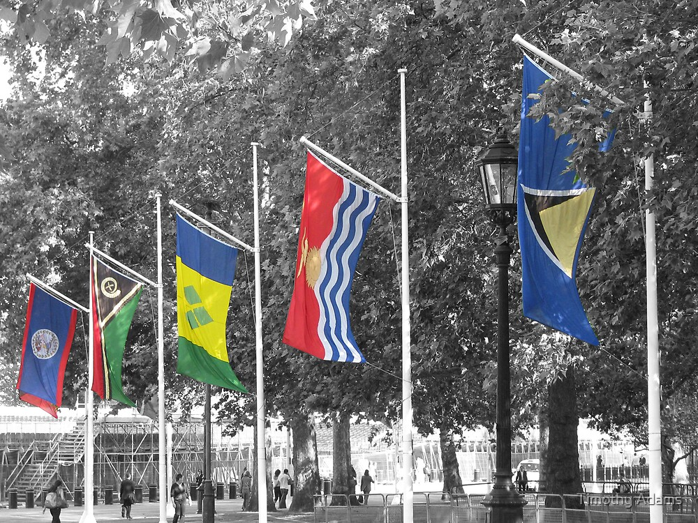Commonwealth flags by Timothy Adams
