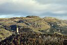 The National Wallace Monument - Stirling, Scotland by Richard Flint