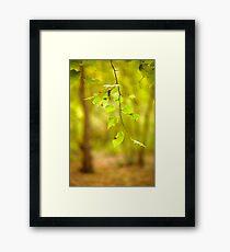Hang Loose Framed Print