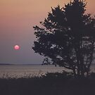 Big Hard Sun by ashleyDcrouse