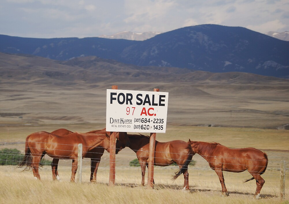For Sale by marycloch