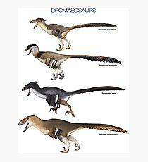 Dromaeosaurs Photographic Print
