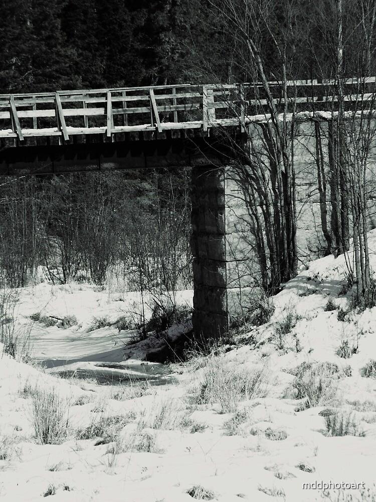 Creek by mddphotoart