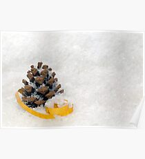 Fir Cones in Snow With Gold Ribbon Poster