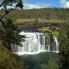Millstream Falls_Atherton Tablelands_Queensland_Australia by Kay Cunningham