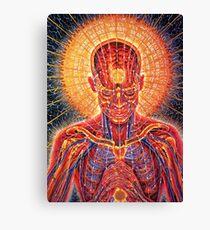 inside the human body Canvas Print