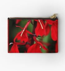 Vision In Red Studio Pouch