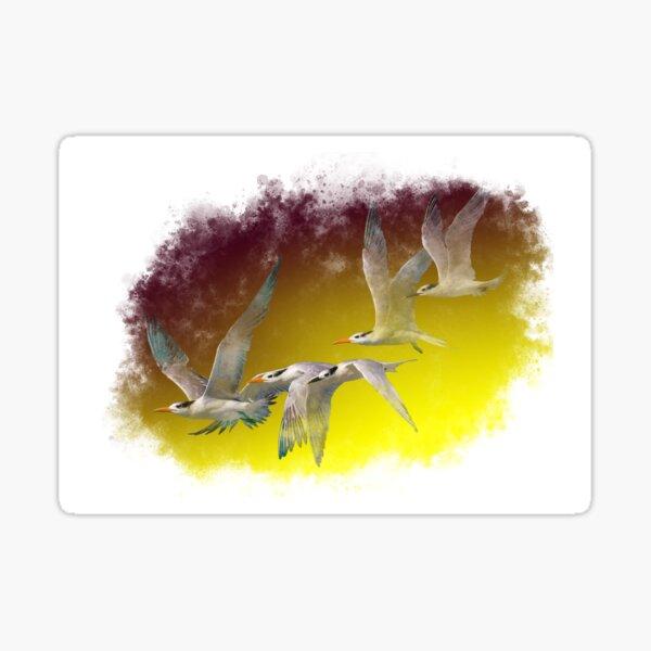 Terns flying together Sticker