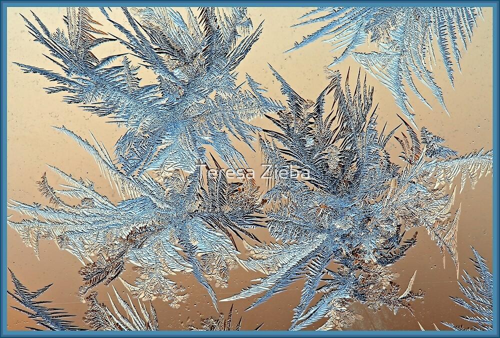 Mr Frost Art Work by Teresa Zieba