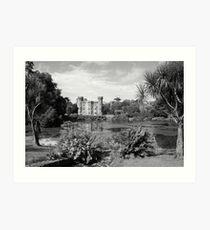 Johnstown Castle  Art Print