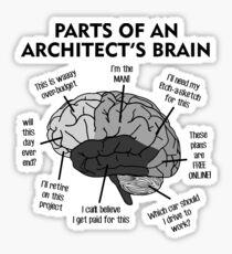 The Architects Brain Anatomy Sticker