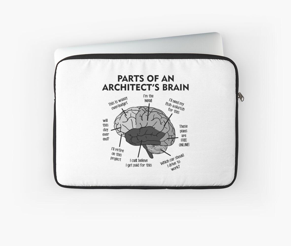 The Architects Brain Anatomy\