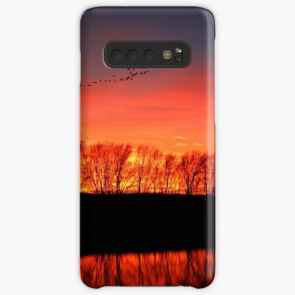 Migration Samsung Galaxy Snap Case