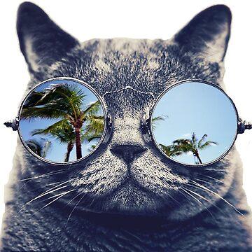 Cat looking at paradise by miranda1187