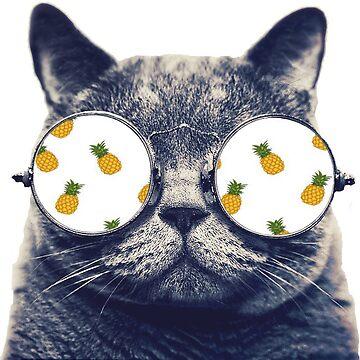 Cat dreams of pineapples  by miranda1187