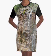 Rocky Falls Graphic T-Shirt Dress