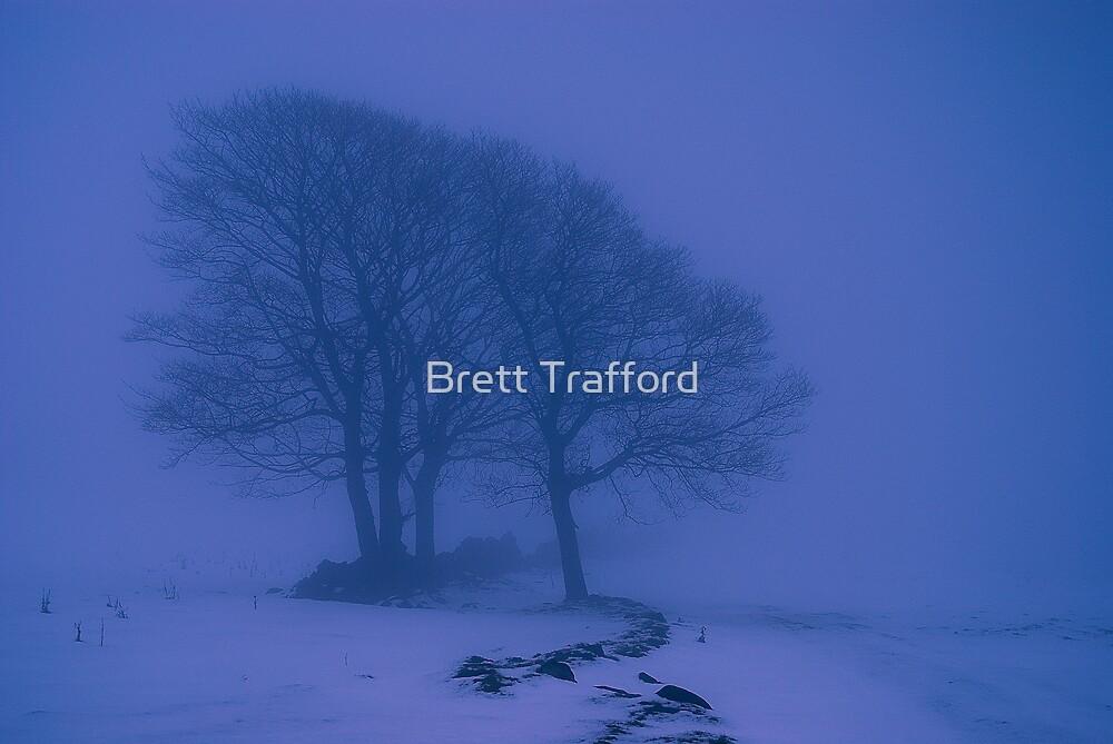 Snow Scape by Brett Trafford